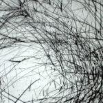 Joan Beall 2012 - Pointe sèche