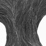 L'arbre linogravure 49x49cm 2009